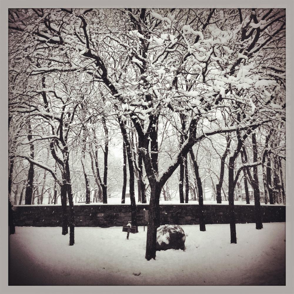 FRTGRNE_SNOW_01_WEB.jpg