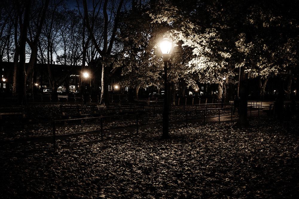 Brklyn_McCarem_Park_Skyline-023.jpg