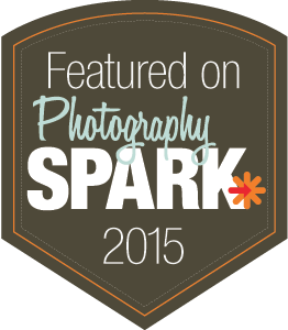 photography-spark-2015badge.png