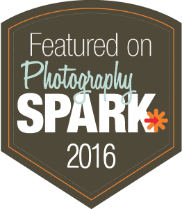 photography-spark-2016.png