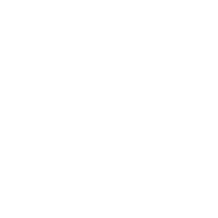 Lion Bridge Brewing Company