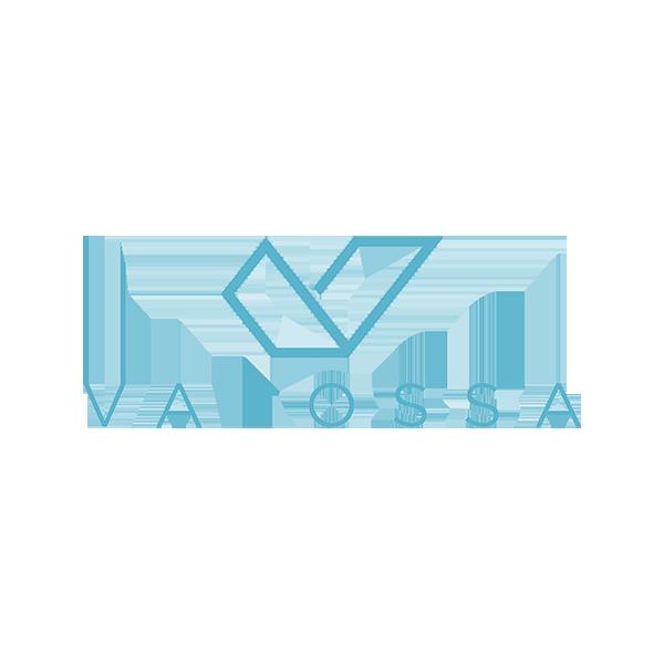 valossa logo_blue_transp 600x600.png