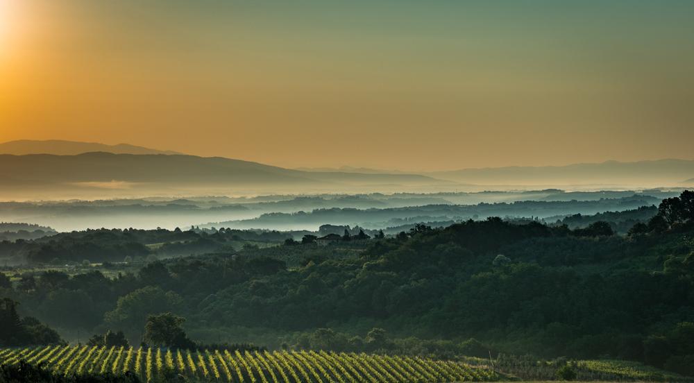 Italy : Tuscany : Sunrise in Gaiole in Chianti Classico