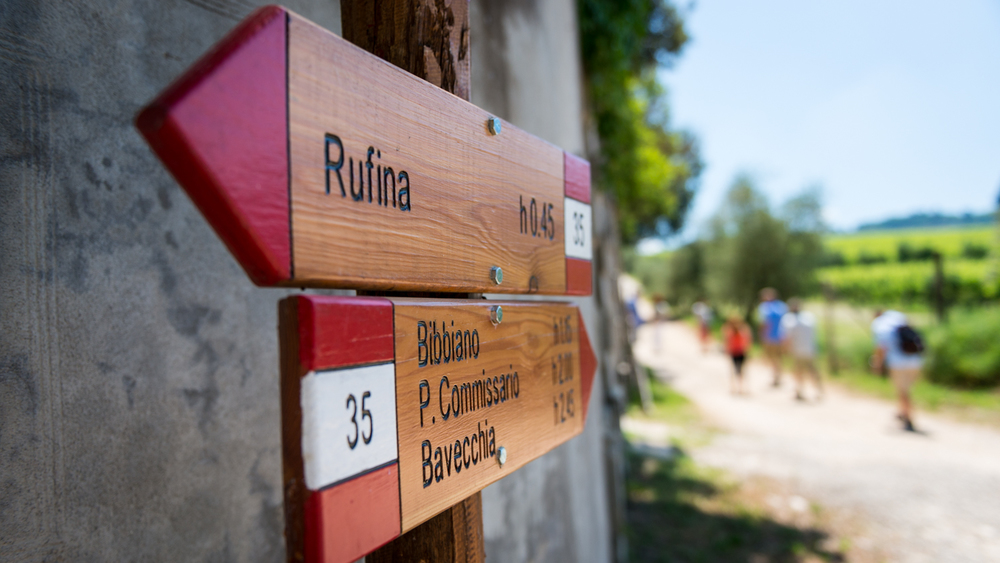Italy : Tuscany : Hiking trails in Chianti Rufina