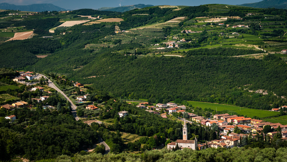 Italy : Veneto : Vineyards surrounding Tenuta Sant'Antonio's estate in Lavagno