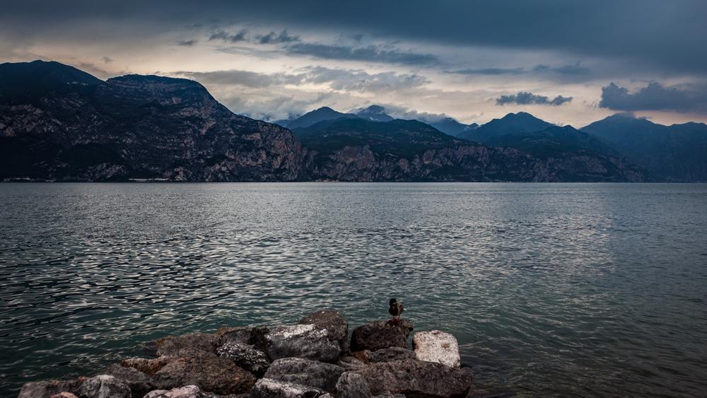 Italy : Veneto : Lake Garda