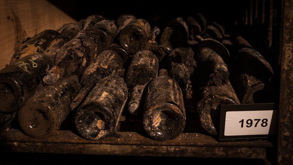 Burgundy : Cote de Beaune : Santenay : In the cellar at Lucien Muzard