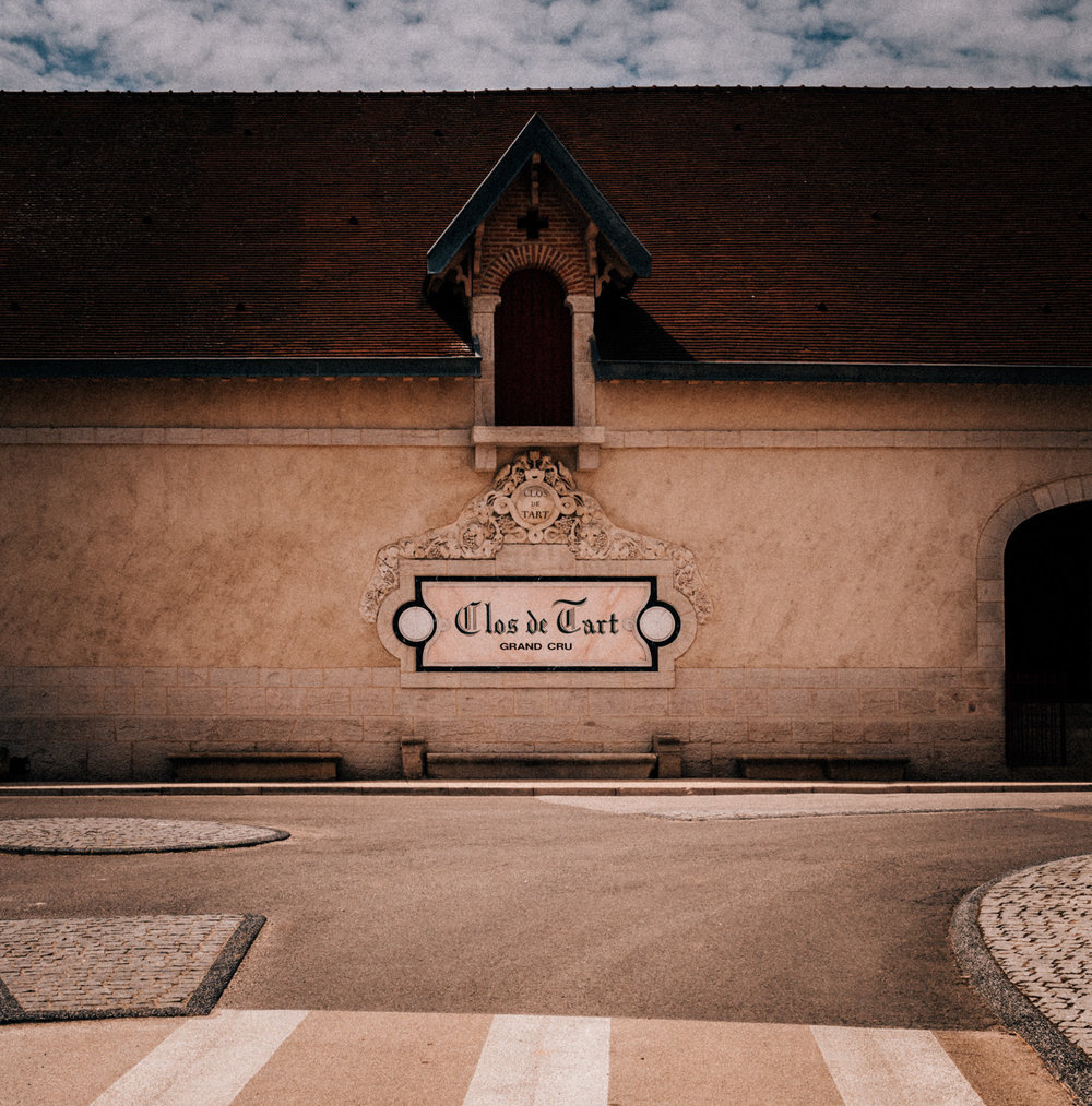 Burgundy : Cote de Nuits : Morey-St-Denis : Clos de Tart