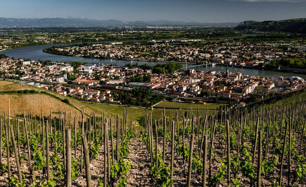 France : Northern Rhone : Overlooking Tain l'Hermitage