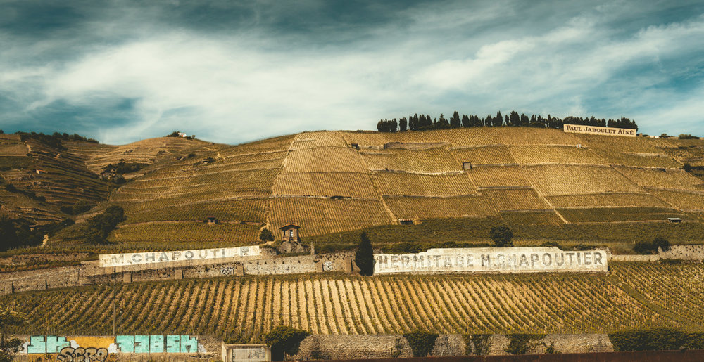 France : Northern Rhone : Hermitage's Le Meal vineyard
