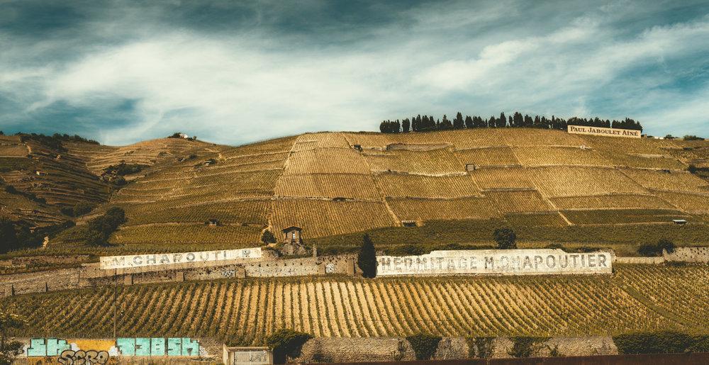 France : Northern Rhone : Hermitage's Le Meal vineyard