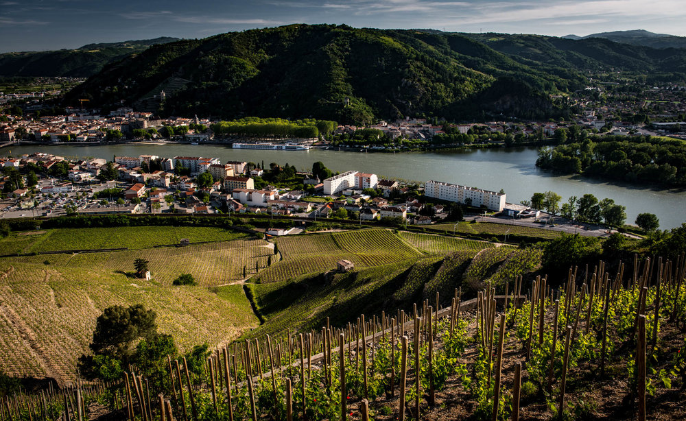 France : Northern Rhone : Hermitage's Bessards vineyard with Tain l'Hermitage and Tournon-sur-Rhone in the background