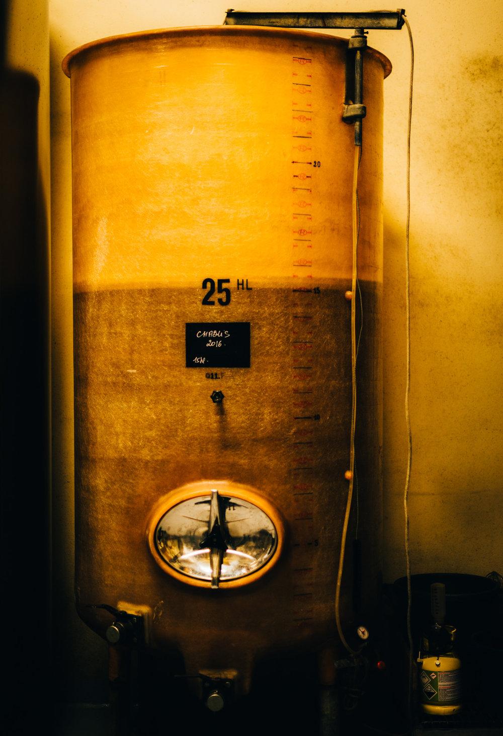 Burgundy : Chablis : Fermentation tank at Gilbert Picq