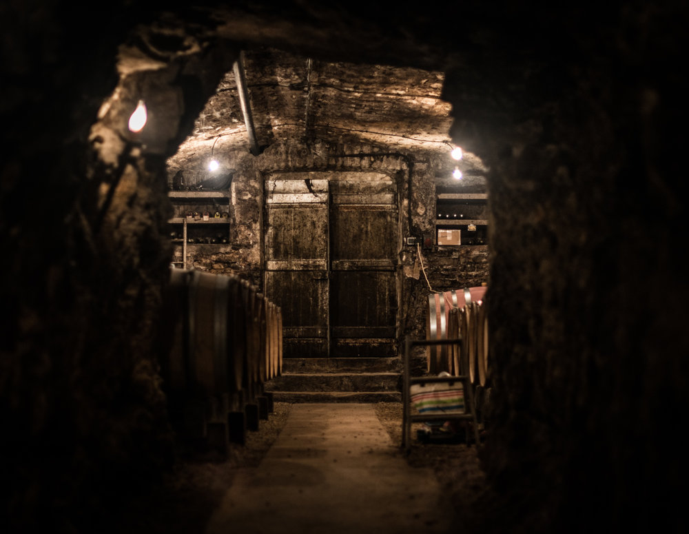 Burgundy : Cote Chalonnaise : Rully : In the cellar at La Folie