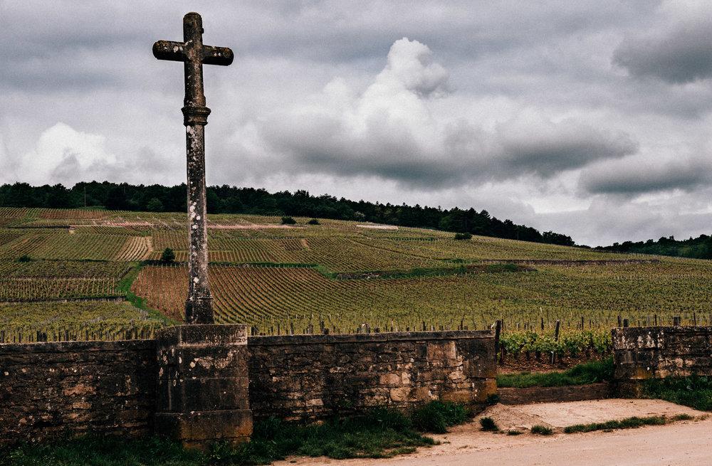 Burgundy : Cote de Nuits : Vosne-Romanée : Romanée-Conti