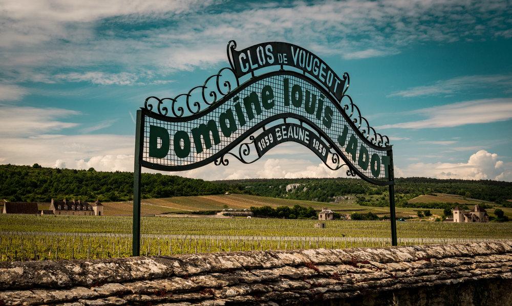 Burgundy : Cote de Nuits : Vougeot : Clos de Vougeot