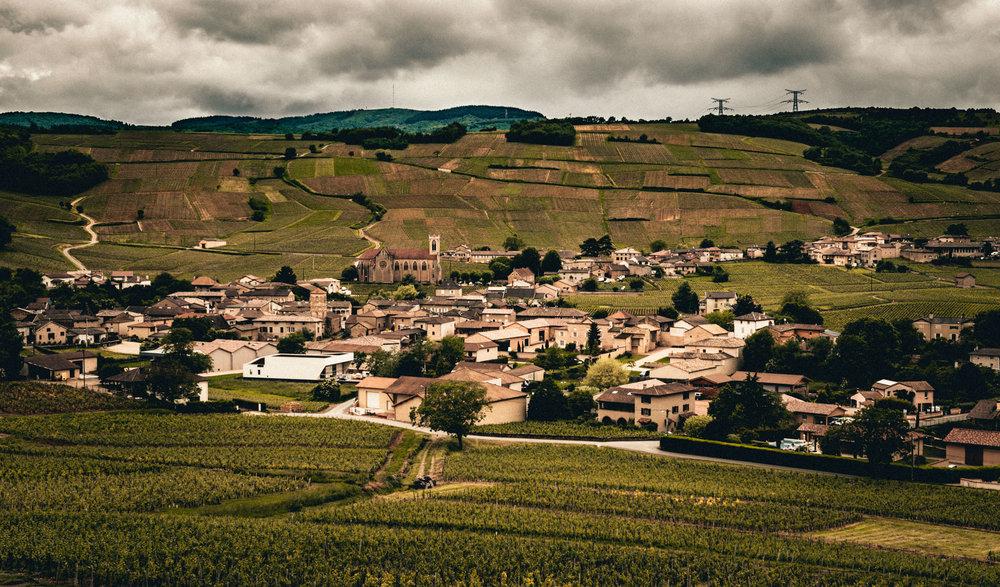 Burgundy : Maconnais : Fuissé