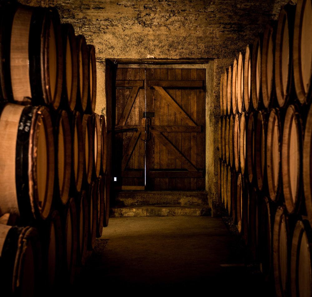 Burgundy : Cote de Beaune : Beaune : In the cellar at Domaine de Bellene