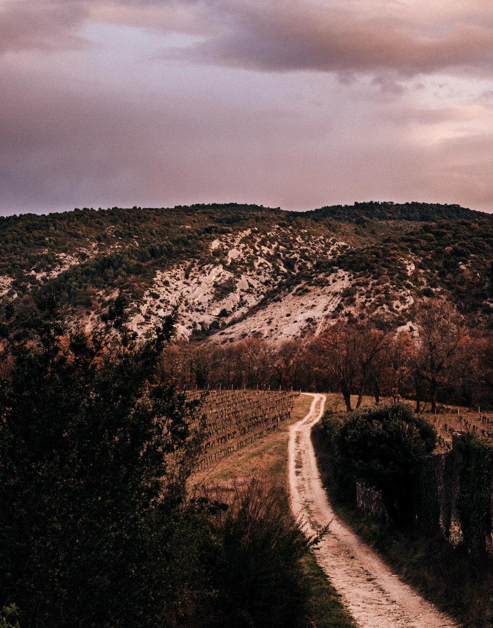 France : Southern Rhone : Ventoux