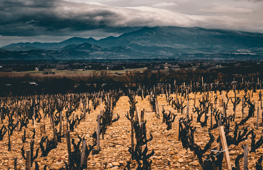 France : Southern Rhone : Chateauneuf-du-Pape and Mont Ventoux