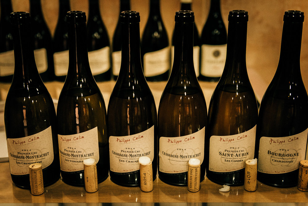Burgundy : Cote de Beaune : Chassagne-Montrachet : Tasting at Philippe Colin