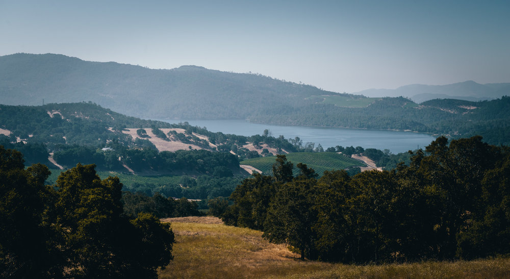 California : Napa Valley : A view of Lake Hennessey