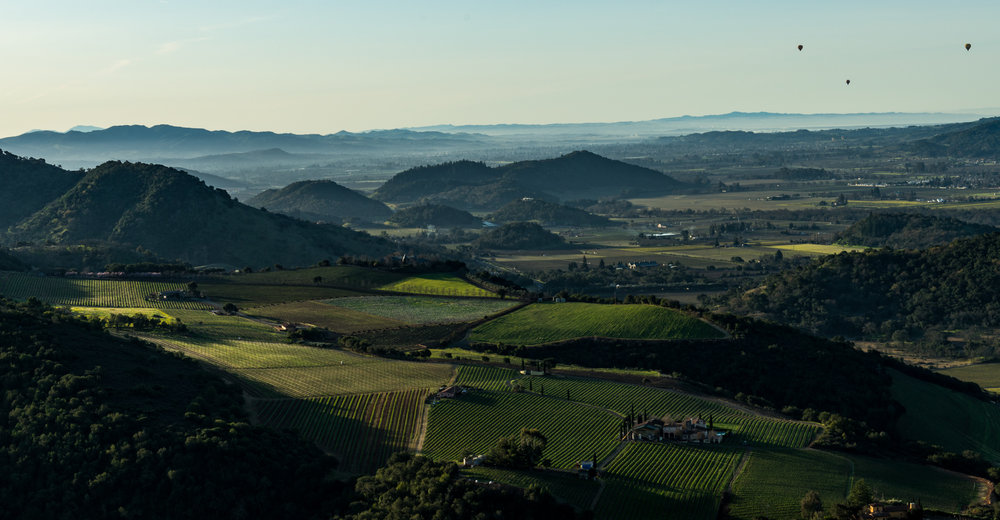 California : Napa Valley : A view of the Napa Valley from atop Pritchard Hill at Montagna