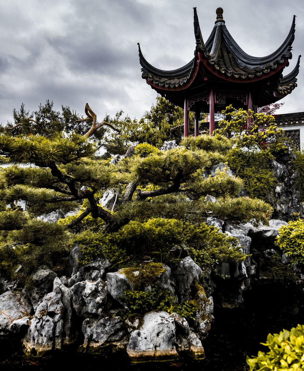 Canada : British Columbia :Vancouver : Sun Yat-Set Chinese Gardens