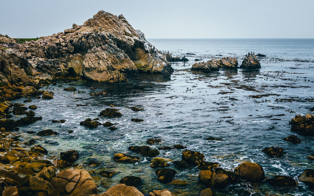 California : Monterey : Point Joe