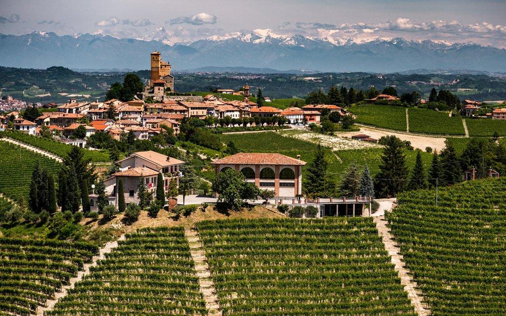 Italy : Piedmont : Bruno Giacosa's Le Rocche del Falletto vineyard in Serralunga d'Alba