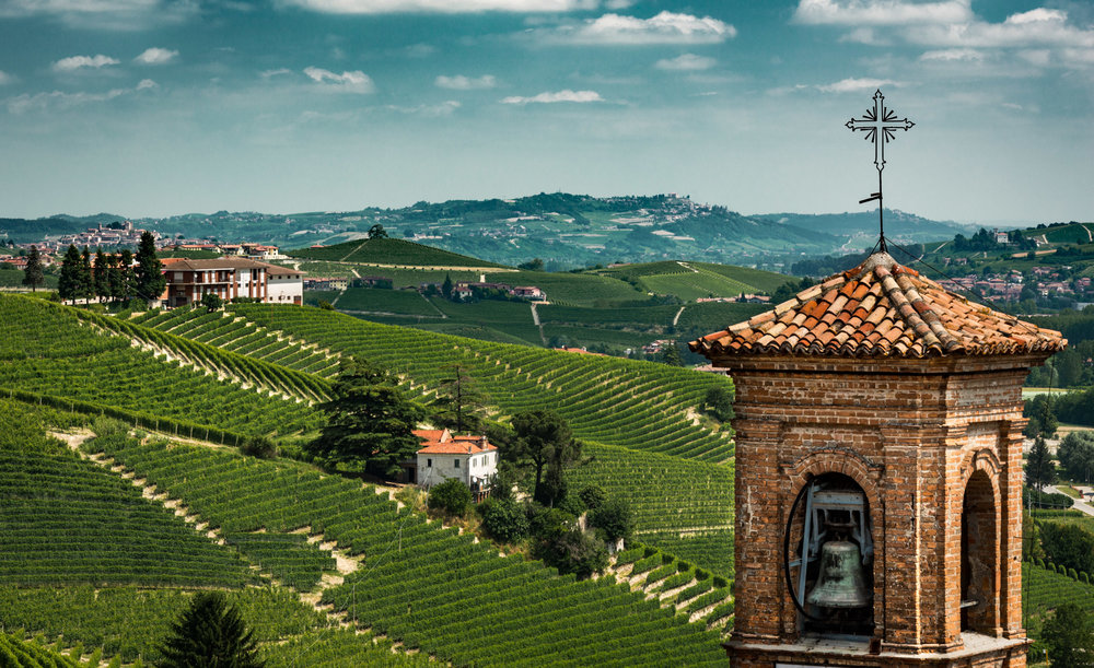 Italy : Piedmont : Clock tower of Barolo's church, Cannubi vineyard, and il Cedro in the distance