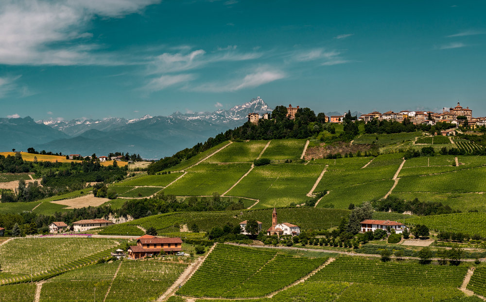Italy : Piedmont : Novello with Monviso on the horizon