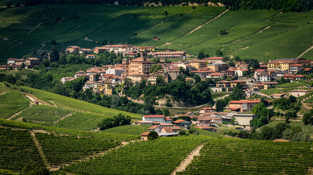 Italy : Piedmont : Village of Barolo