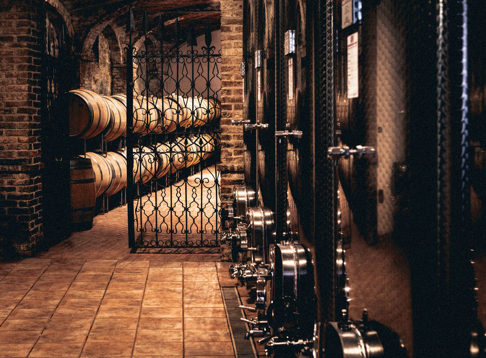 Italy : Piedmont : Barrels and tanks in the cellar of Elio Altare