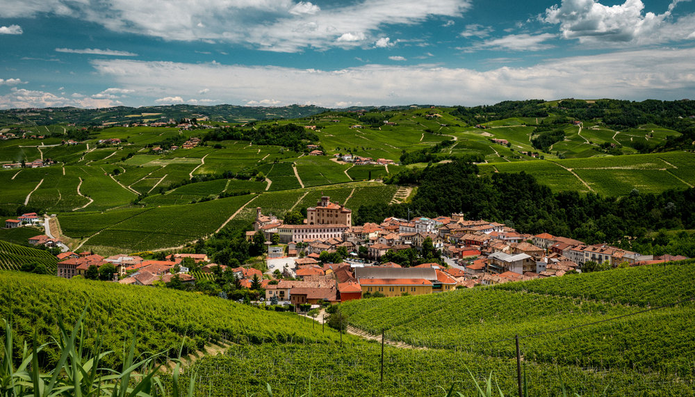 Italy : Piedmont : Looking down into Barolo, one of the rare villages at lower elevation rather than on a hilltop
