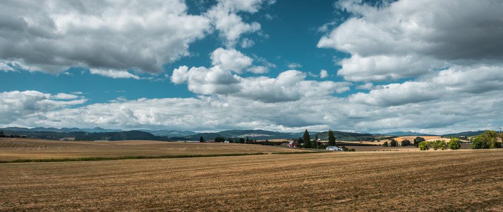 US : Oregon : Yamhill scenery