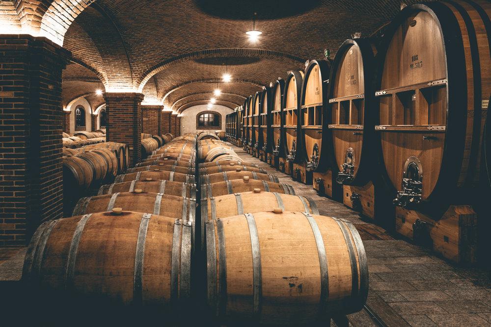 Italy : Piedmont : Barrels and casks in the cellar at Paolo Scavino in Castiglione Falletto