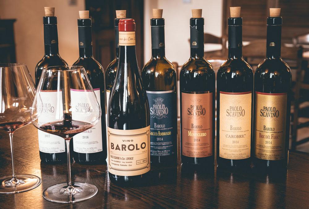 Italy : Piedmont : Tasting at Paolo Scavino in Castiglione Falletto