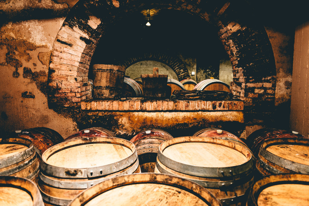 Italy : Piedmont : Sottimano's cellar in Neive