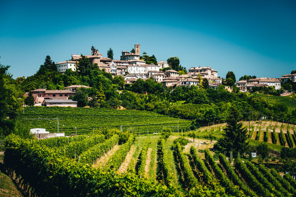 Italy : Piedmont : Neive, one of the villages in the Barbaresco zone
