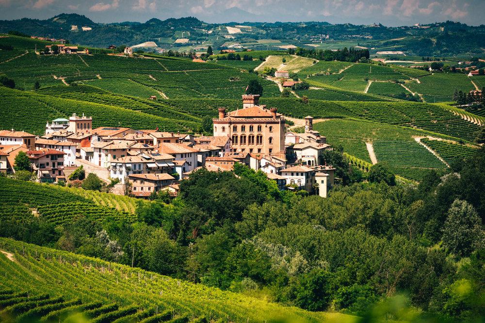 Italy : Piedmont : Barolo