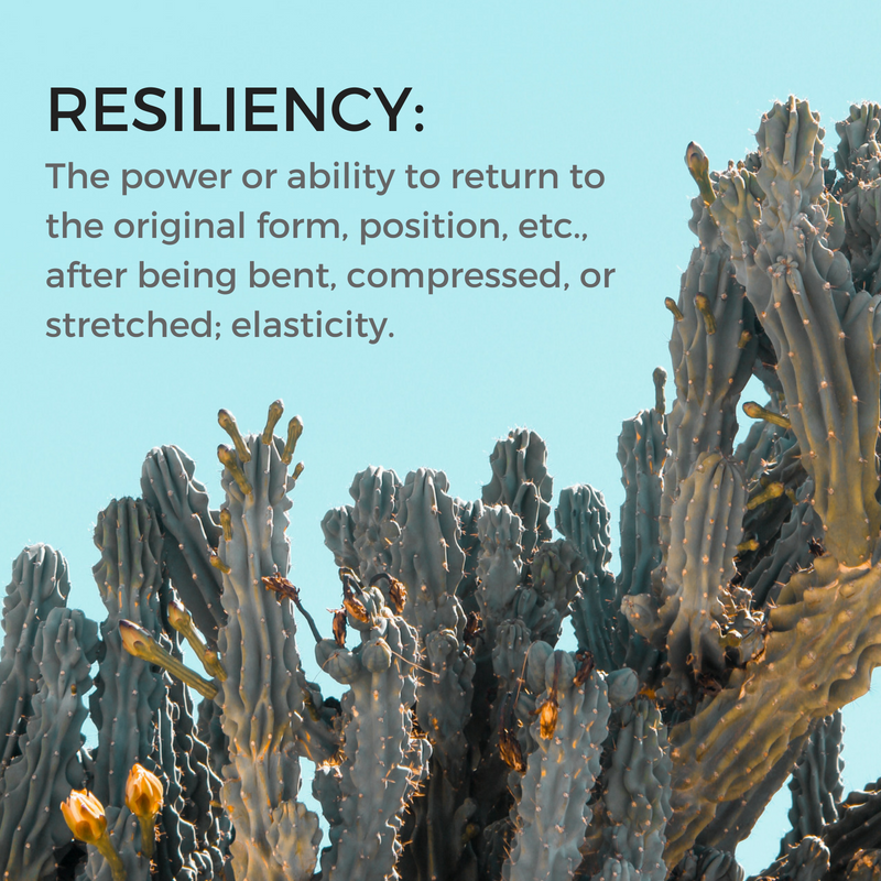 RESILIENCYdefinition.png