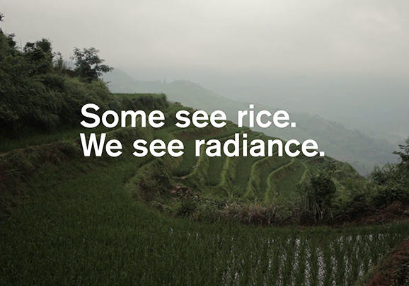 Rice is an active ingredient in Origins' Modern Friction line.