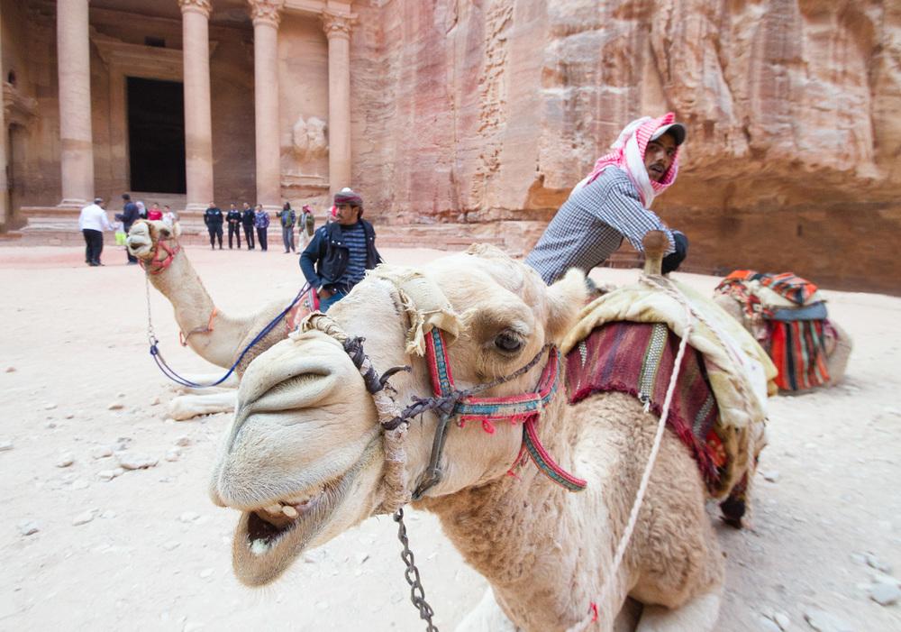 Christian-Schaffer-Jordan-Petra-Camel-003.jpg