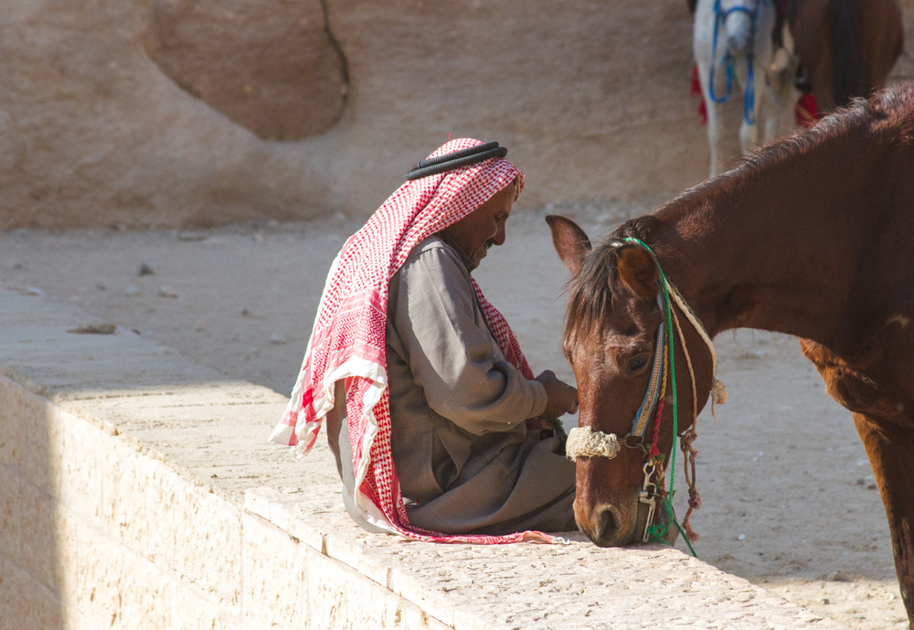 Christian-Schaffer-Jordan-Petra-Horse-002.jpg