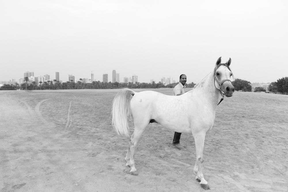 Christian-Schaffer-Bahrain-Desert-White-Horse-002.jpg
