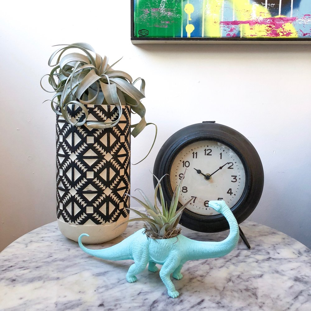 Fun Nostalgic Throwbacks  It's all about the details! Bold geometric shapes, vintage throwbacks, and natural elements make this a winning assortment. Combine your playful side with some natural beauty in a colorful dinosaur planter. Takes you back to your childhood, huh?   You can even order them online! Pick from an assortment of dinosaur options with   succulent   or   air plant  .
