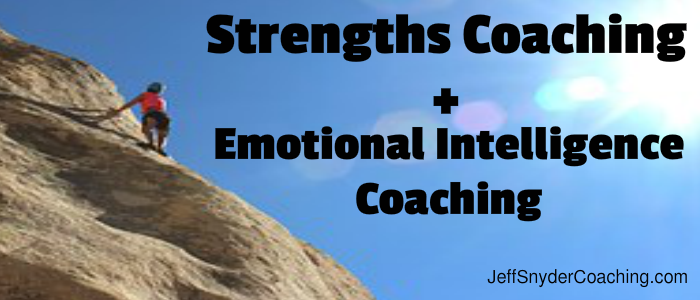 Emotional Intelligence Coach