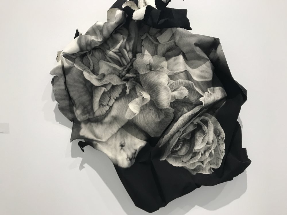 In conte crayon on rag paper,  Crushed Roses , 2017, by Josph Stashkevetch, Von Lintel Gallery, LA, CA.