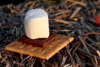 S'more image used by Sweet I Do's Wedding Day Management Specialist